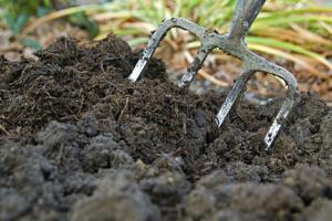 Lacleweb compost